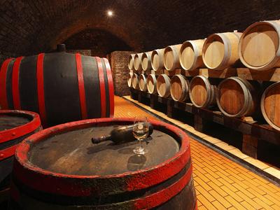 Vinařství Maryša - výrob vína